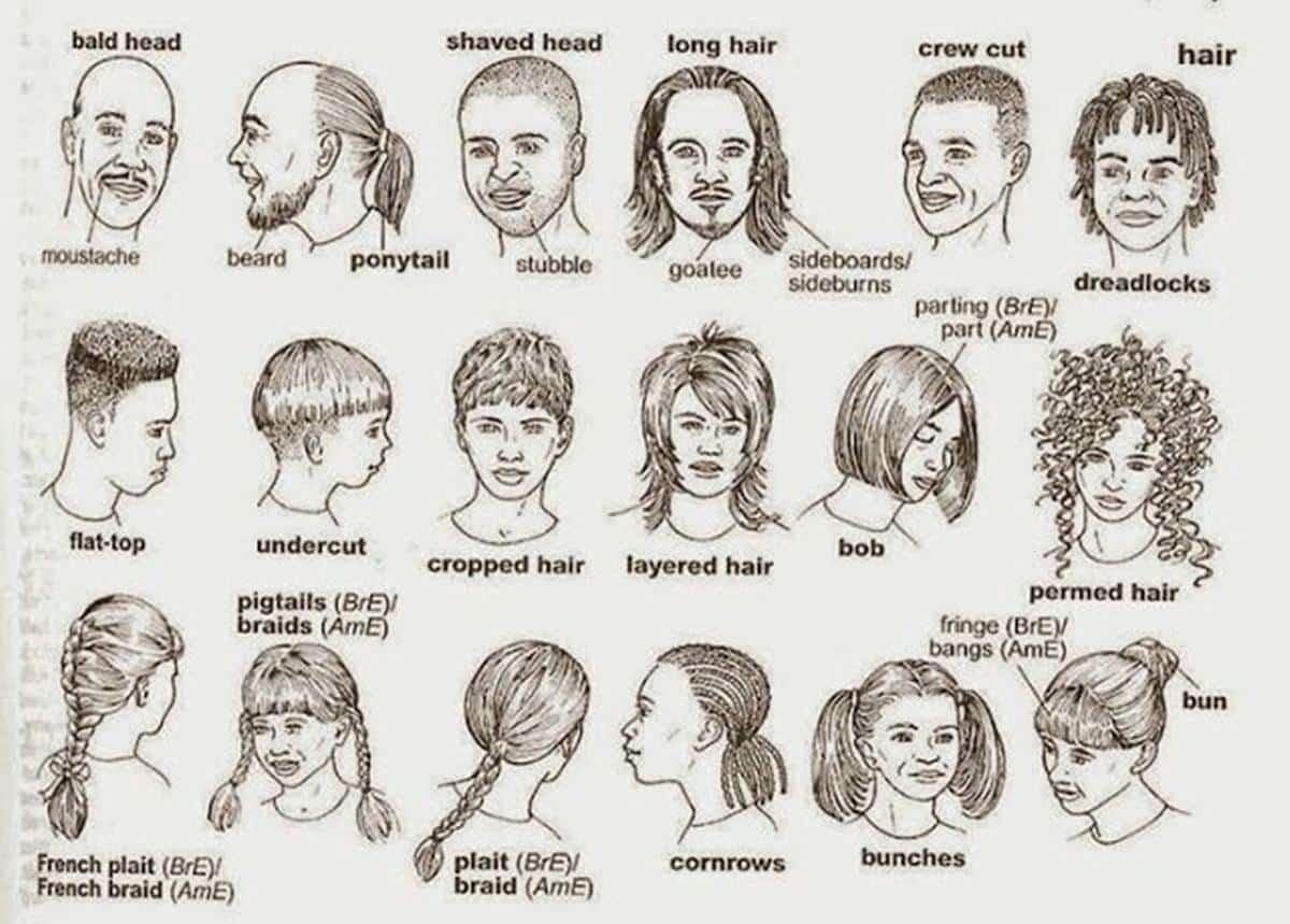 English Vocabulary: Hairstyles – ESL Buzz
