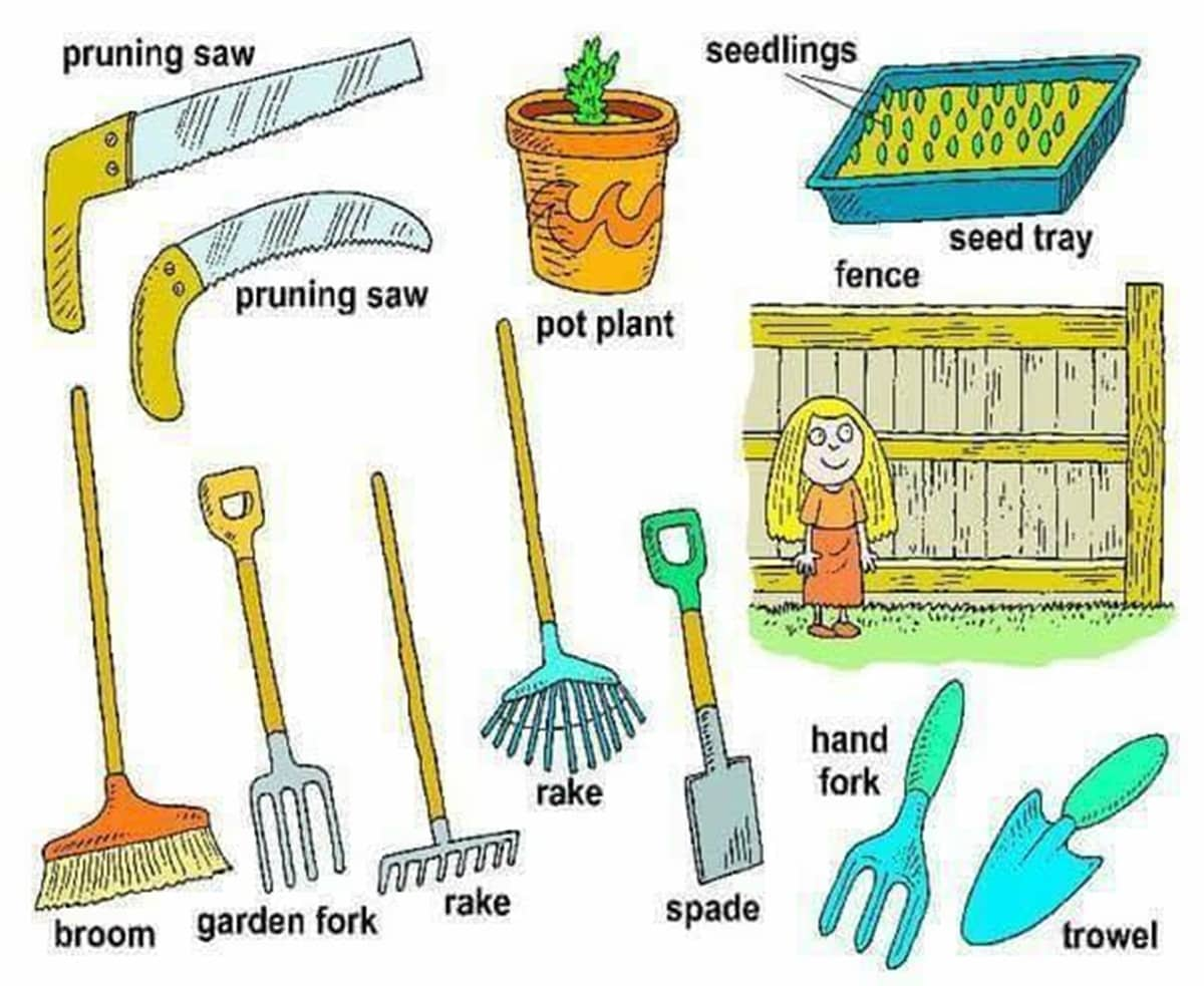 In the garden vocabulary in english esl buzz for Gardening tools vocabulary