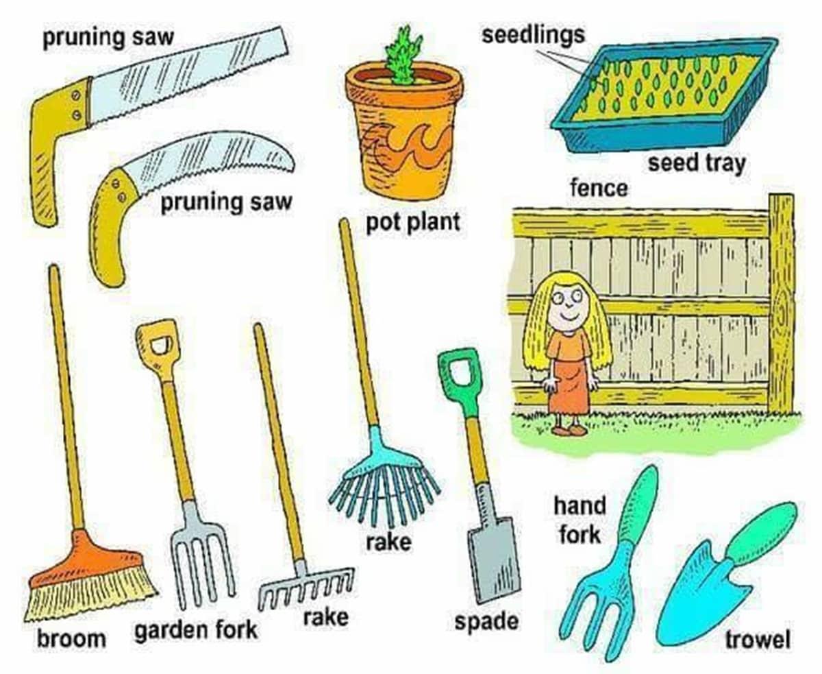 In the Garden Vocabulary 14
