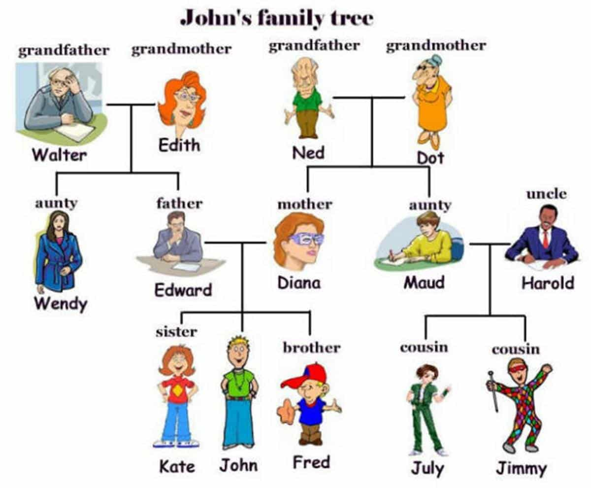 English Vocabulary: Family Members and Different Types of Family 14