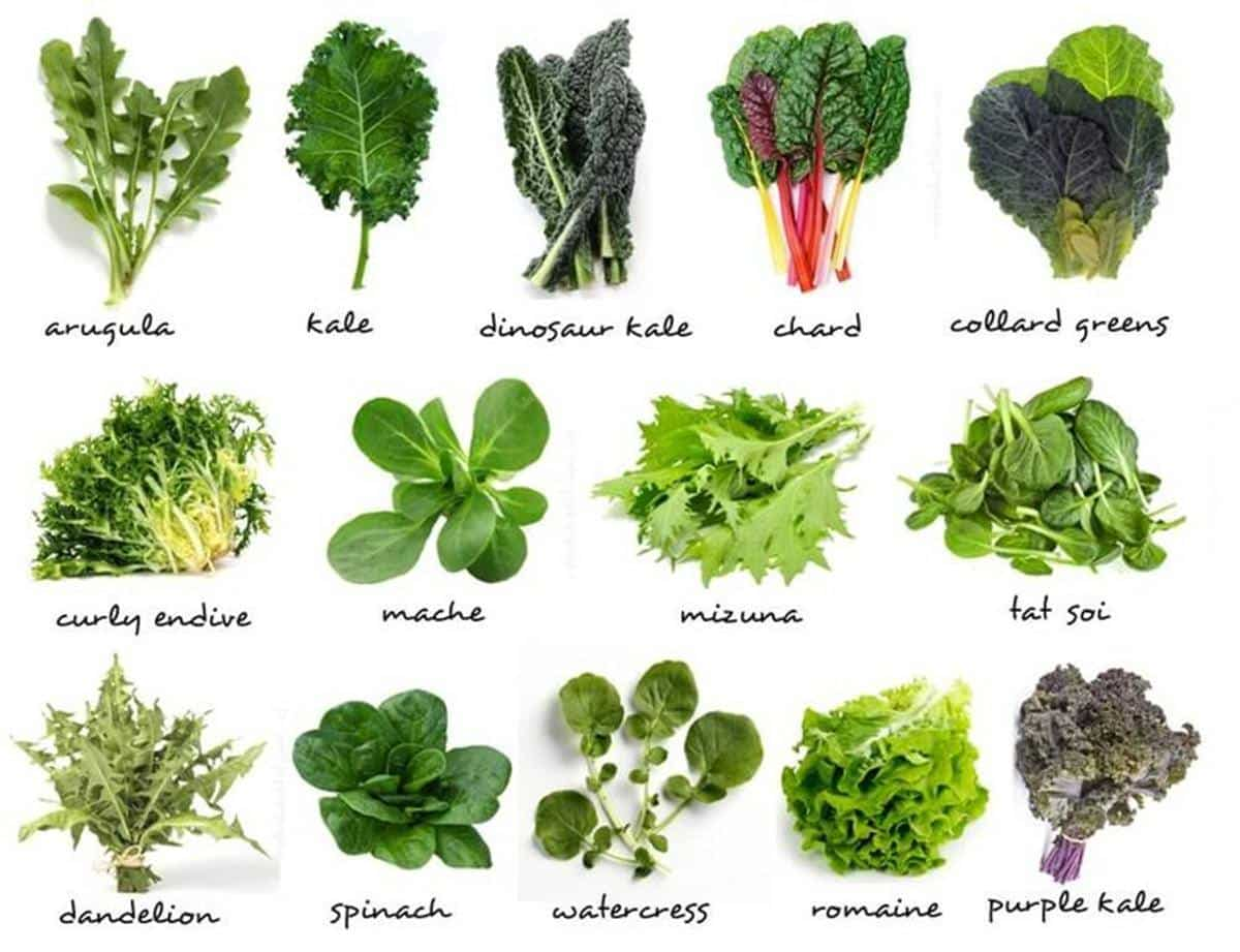 Cruciferous Vegetables: 8 Health Benefits