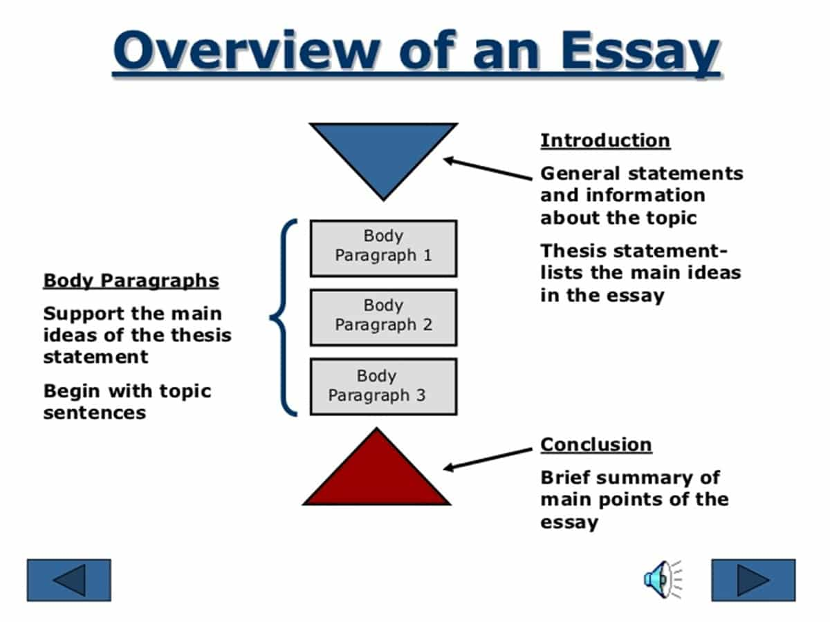 Essay assignment format