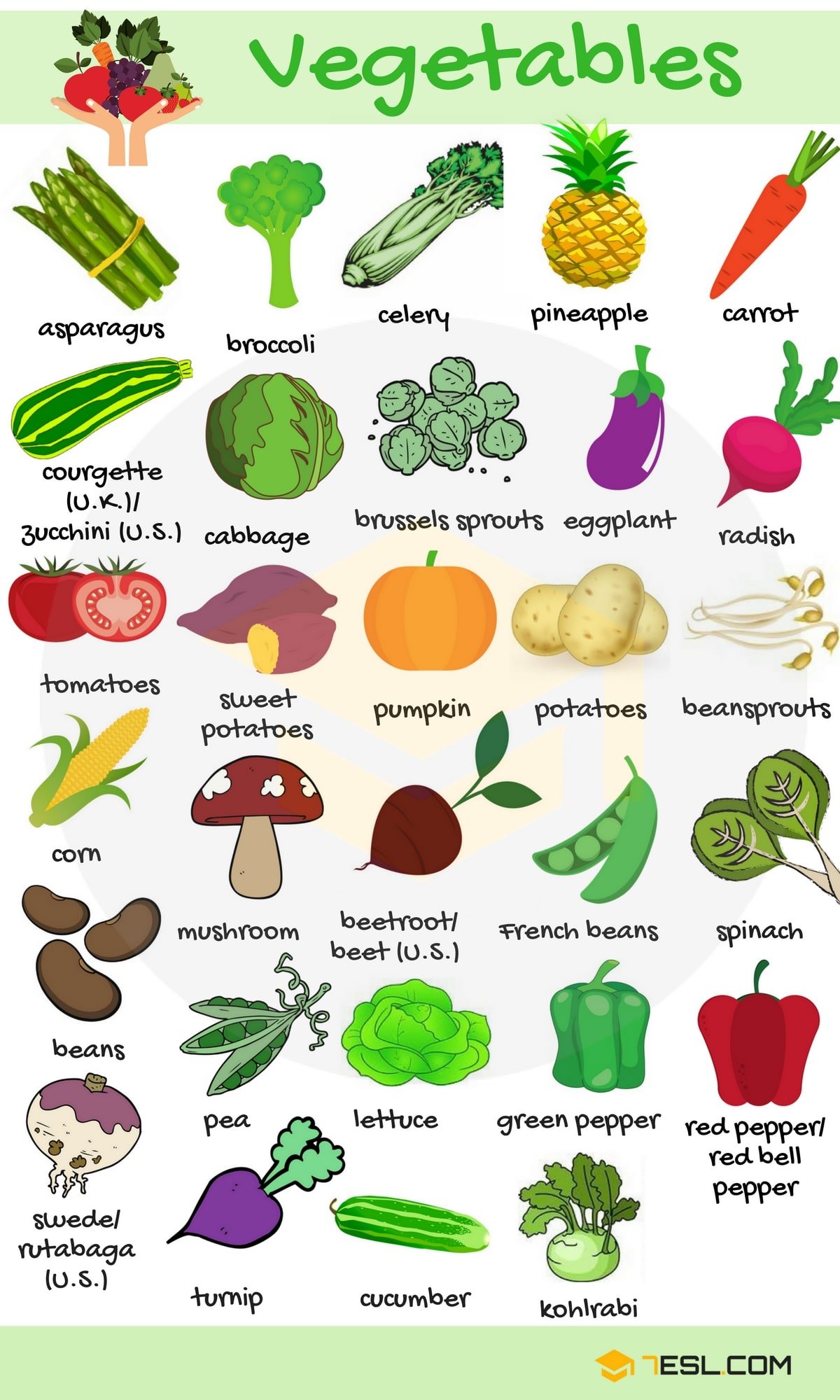 Learn Food Vocabulary ...