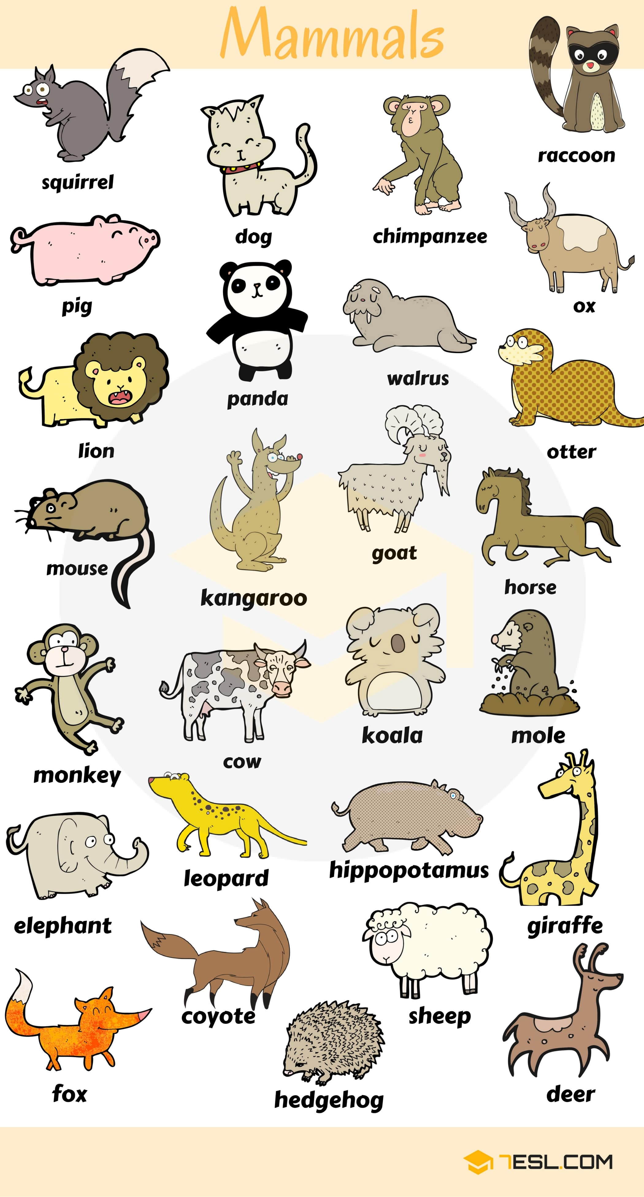 Learn Animals Vocabulary In English