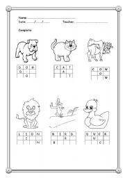 English teaching worksheets: The animals