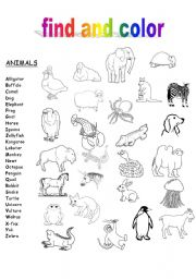 English worksheet: The ABC´s of Animals and Food