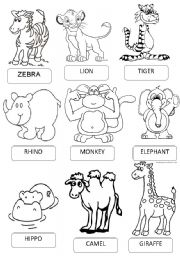 animal worksheet: NEW 73 ANIMAL PICTIONARY WORKSHEET