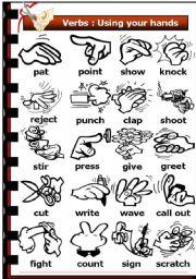Verbs Of The Senses Key