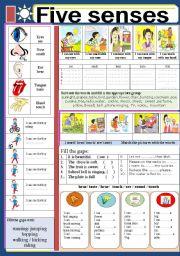 English Exercises Five Senses