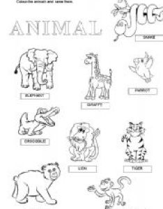 English worksheet wild animals also worksheets rh eslprintables