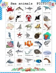 Sea Animals Pictionary Esl Worksheet By Botello