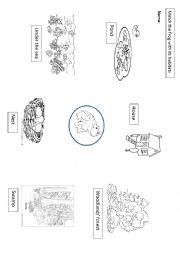 Habitats worksheets