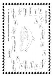 English Exercises: Vertebrate animals