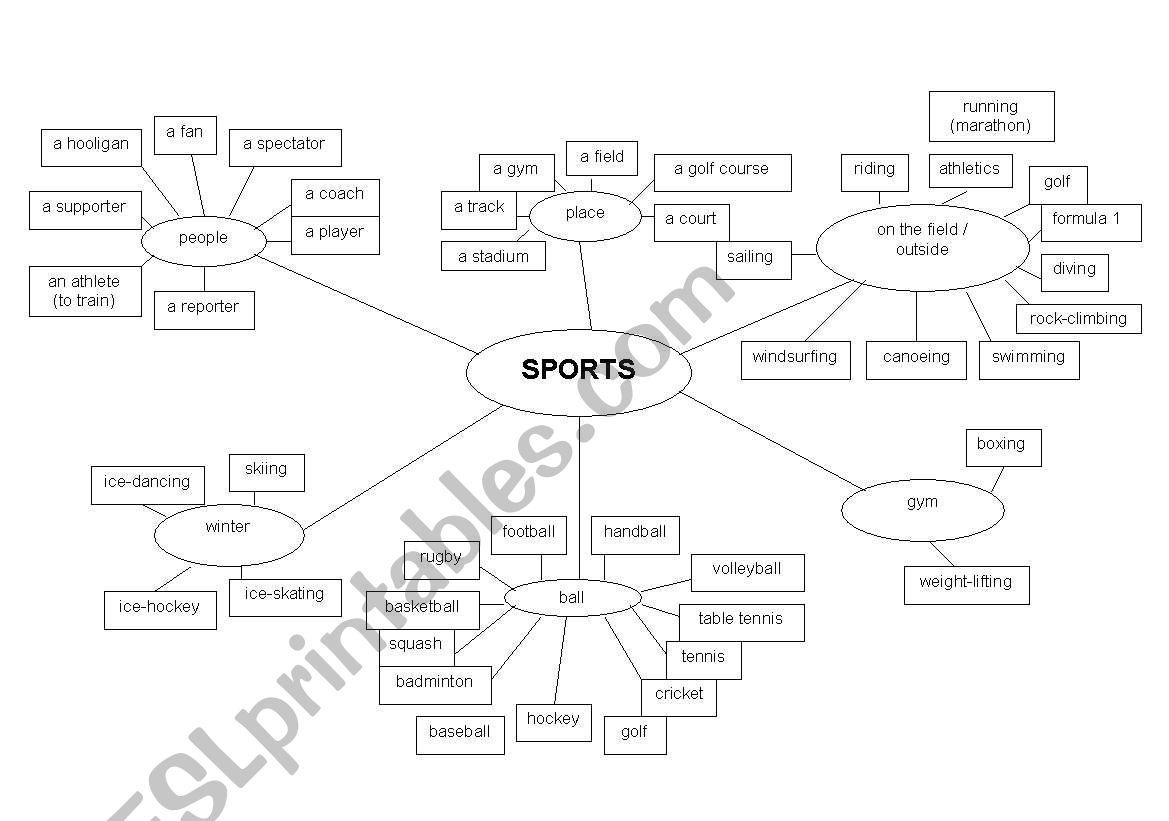 Vocabulary Sports