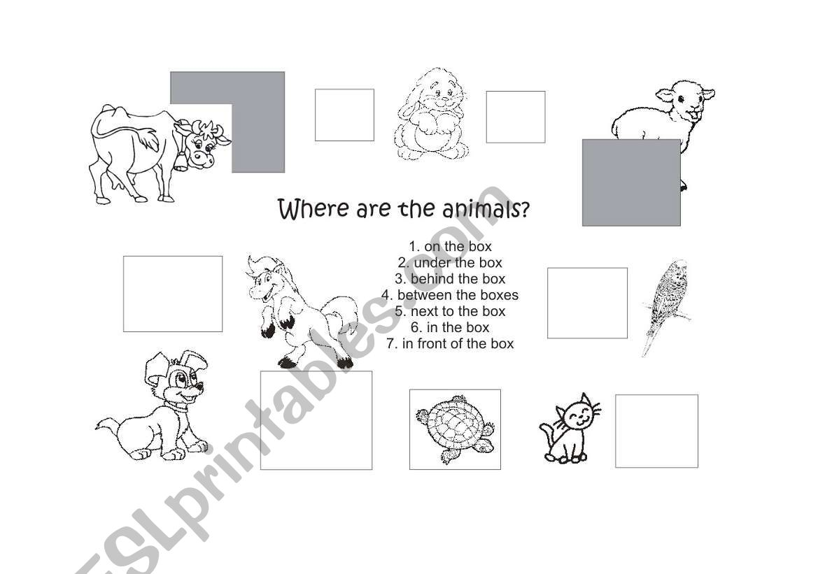 English Worksheets Prepositions