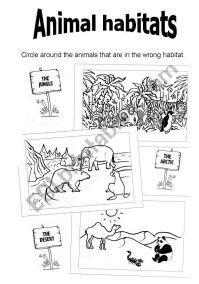 Animal Habitats - ESL worksheet by virginiajimenez