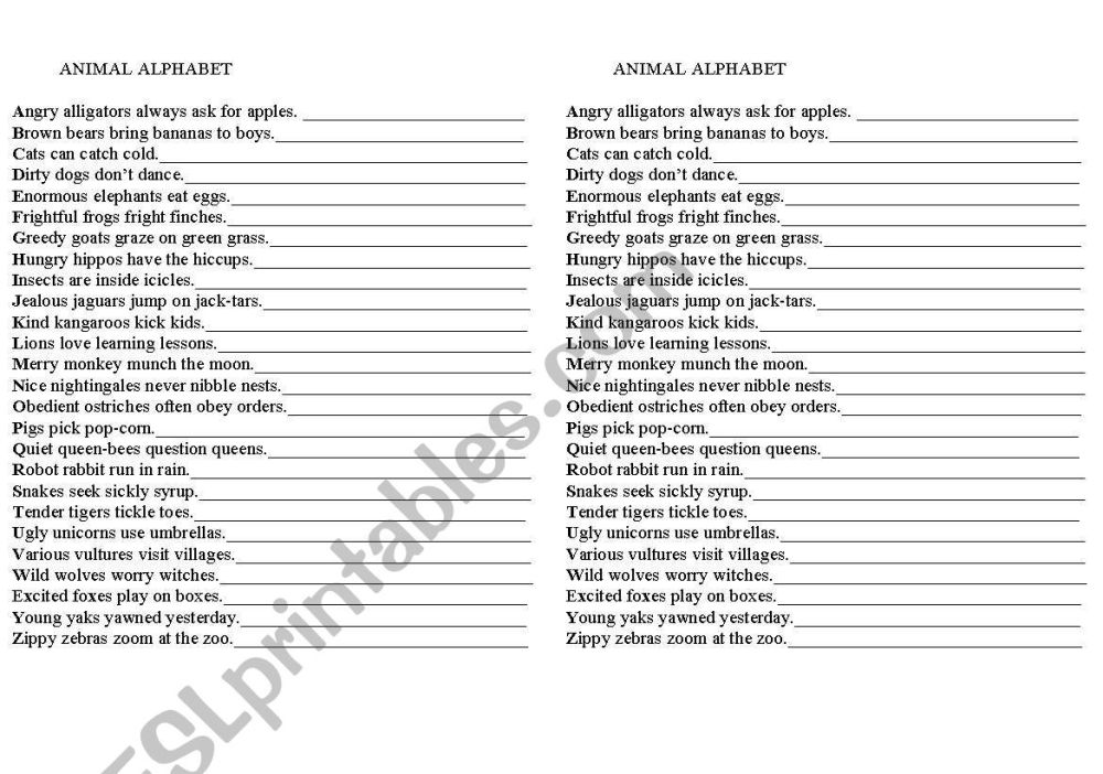 medium resolution of Animal Poem Worksheet   Printable Worksheets and Activities for Teachers