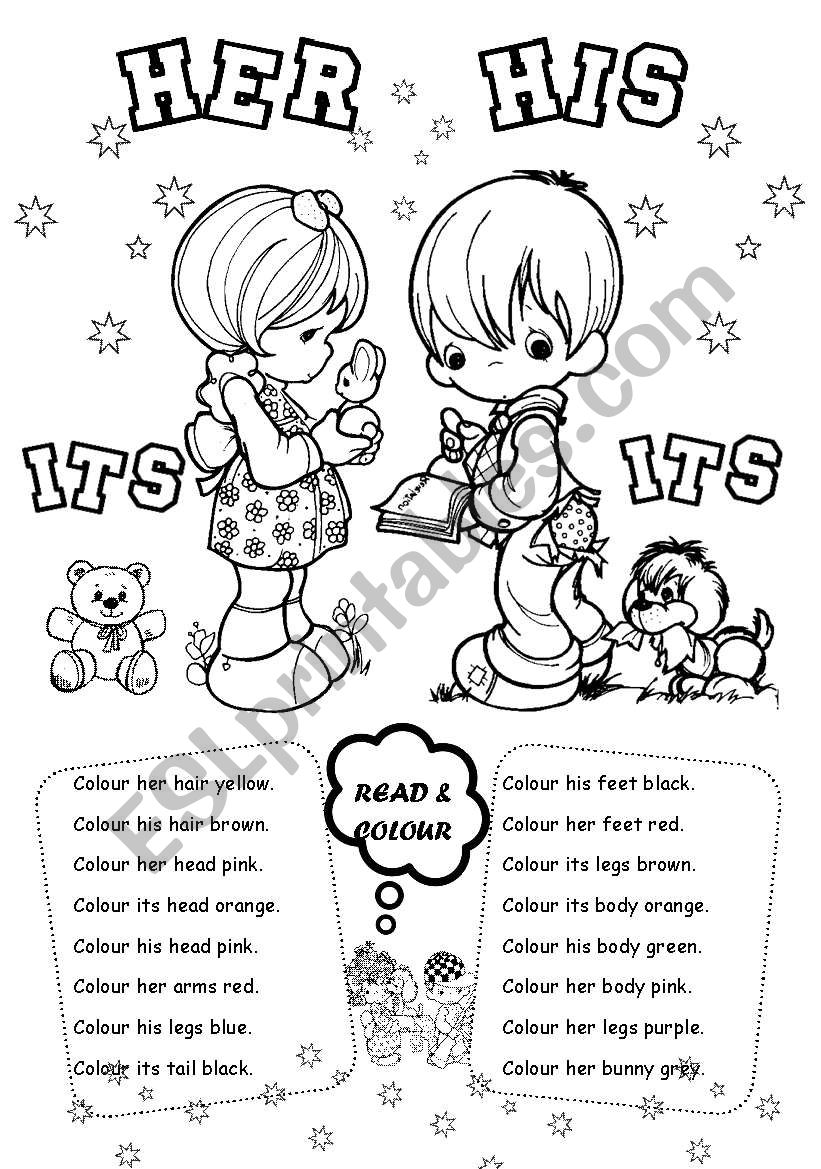 English worksheets: His Her Its