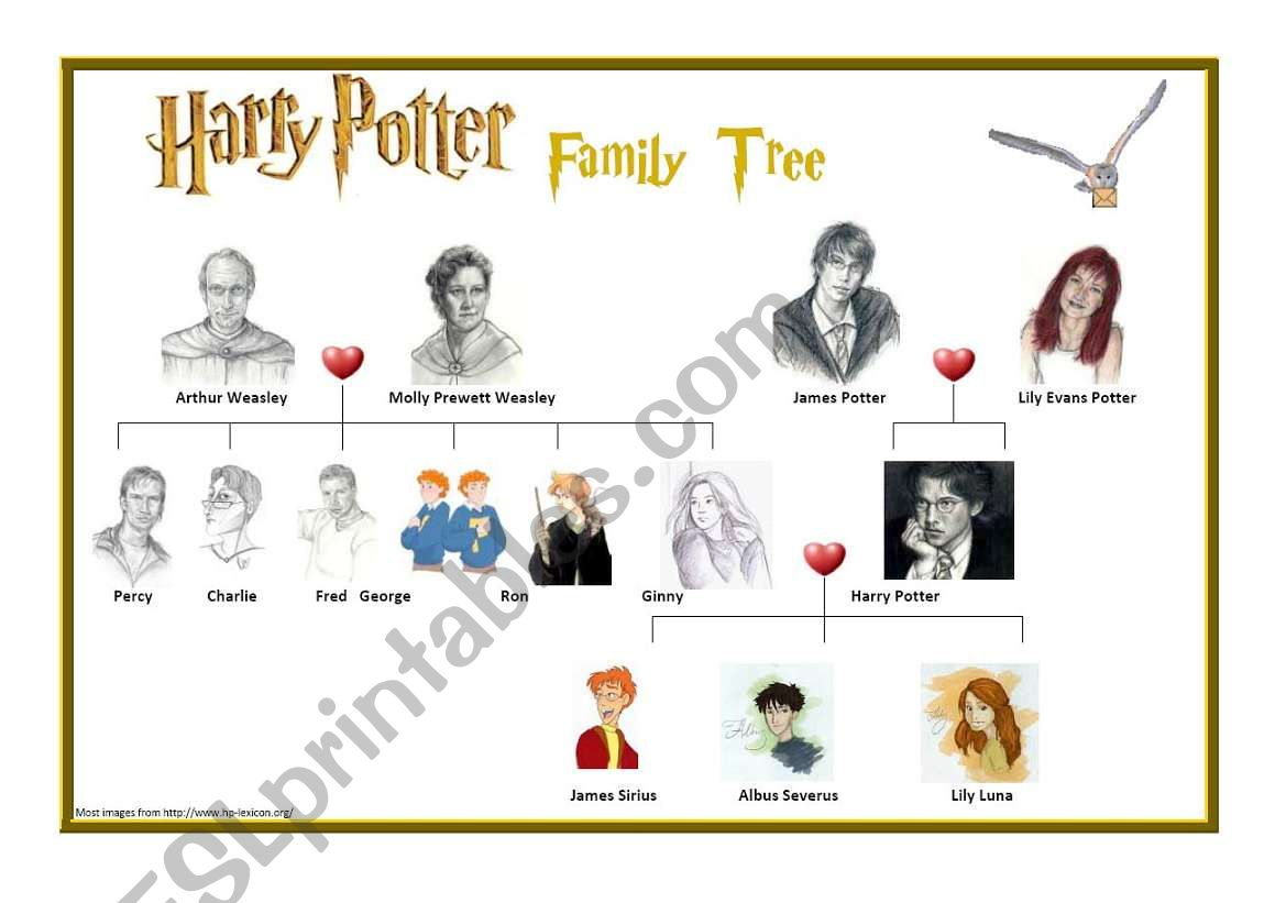 Harry Potter S Family Tree