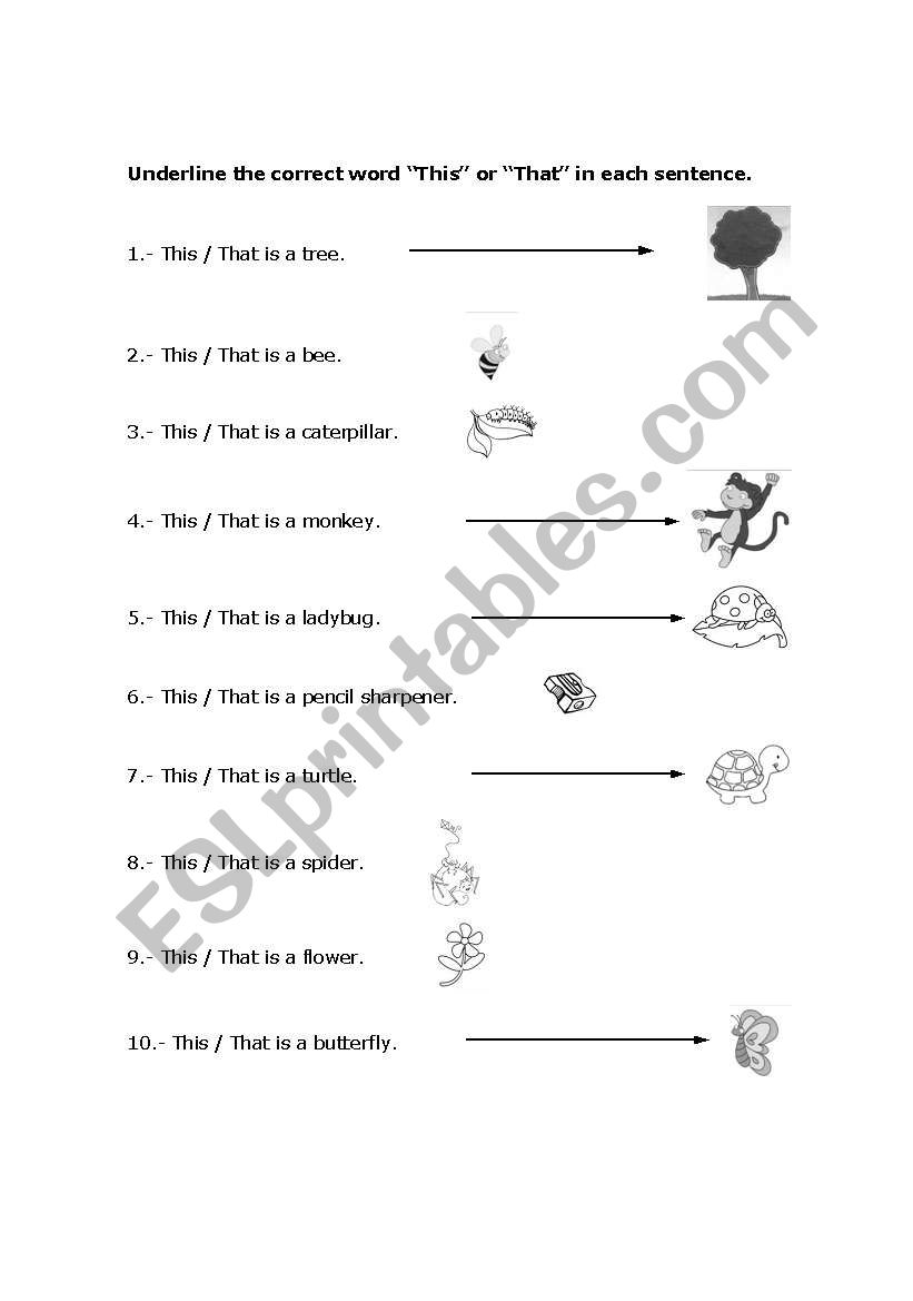hight resolution of English worksheets: This / That (1st grade elementary)