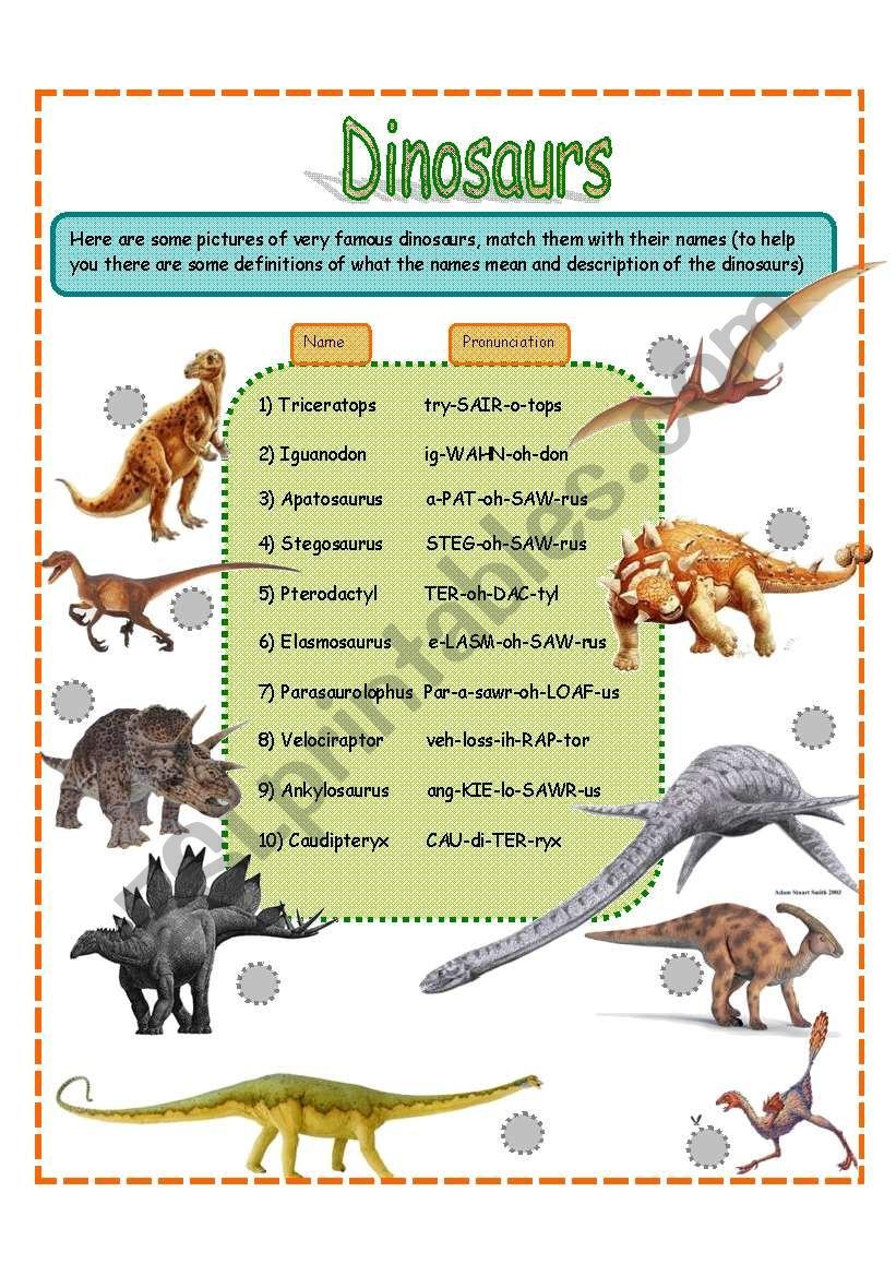 medium resolution of dinosaurs fact worksheet SET 1 (3 pages) - ESL worksheet by jamiejules