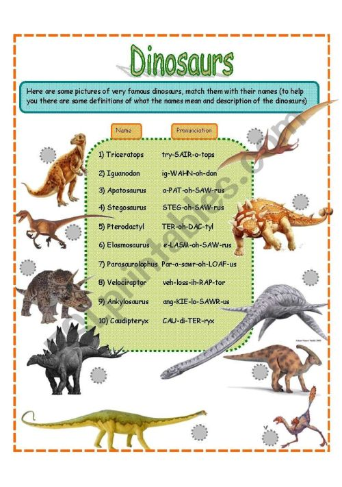 small resolution of dinosaurs fact worksheet SET 1 (3 pages) - ESL worksheet by jamiejules