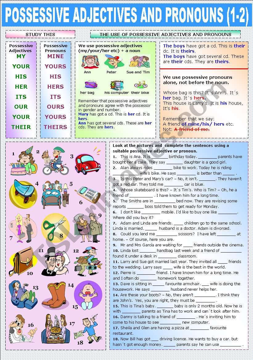 medium resolution of POSSESSIVE ADJECTIVES AND PRONOUNS (1-2) - ESL worksheet by Katiana