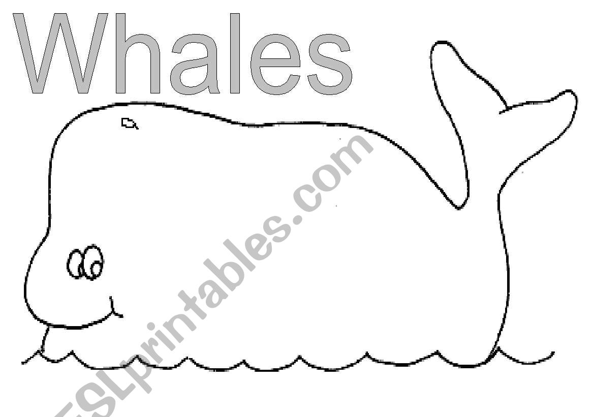 English Worksheets Whale Poem Template