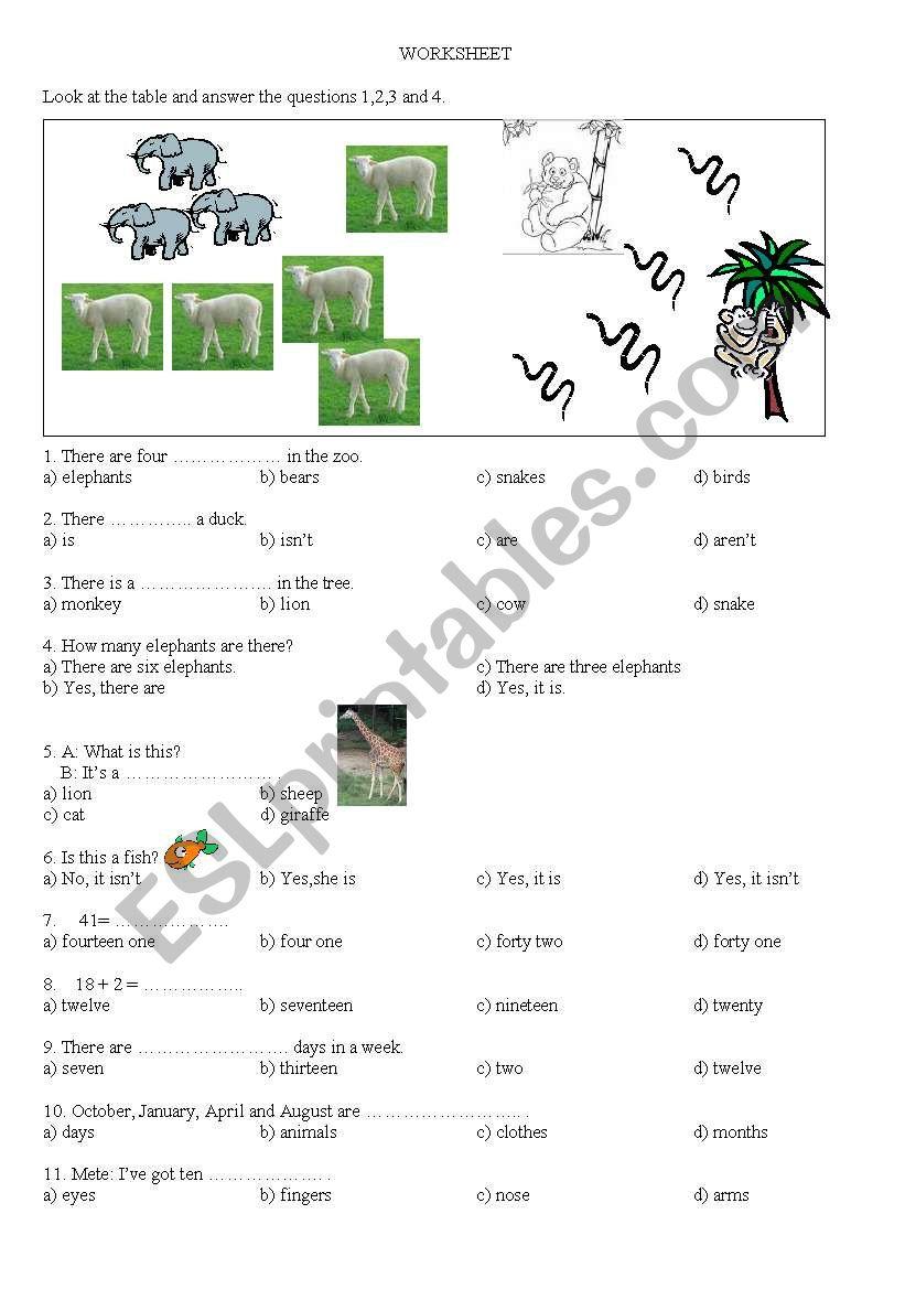 medium resolution of test for 4th grade - ESL worksheet by hmais