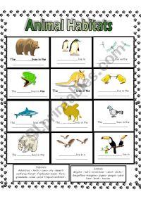 Animal Habitats - ESL worksheet by Anna P