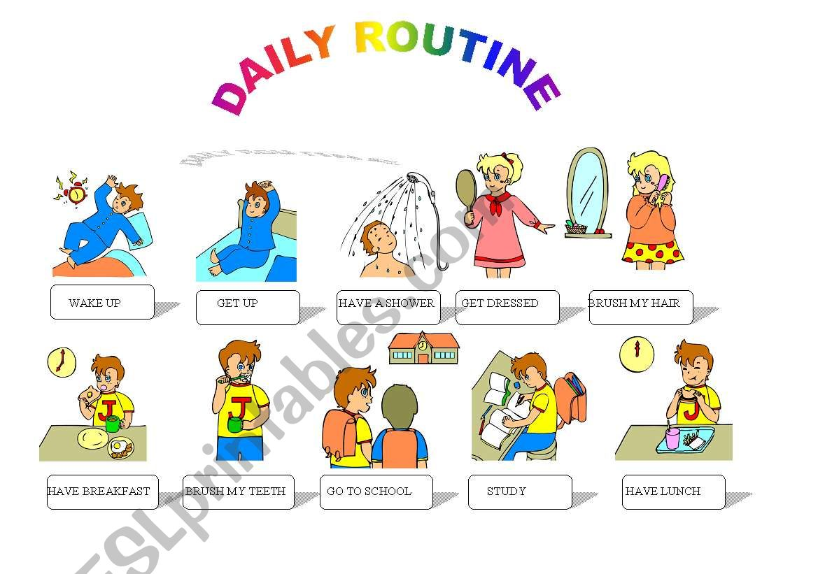 Daily Routine 1