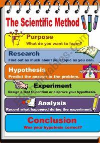 The Scientific Method - ESL worksheet by teacherjorgesanchez