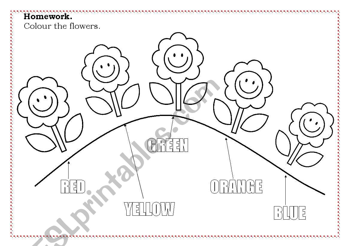 Color The Flowers