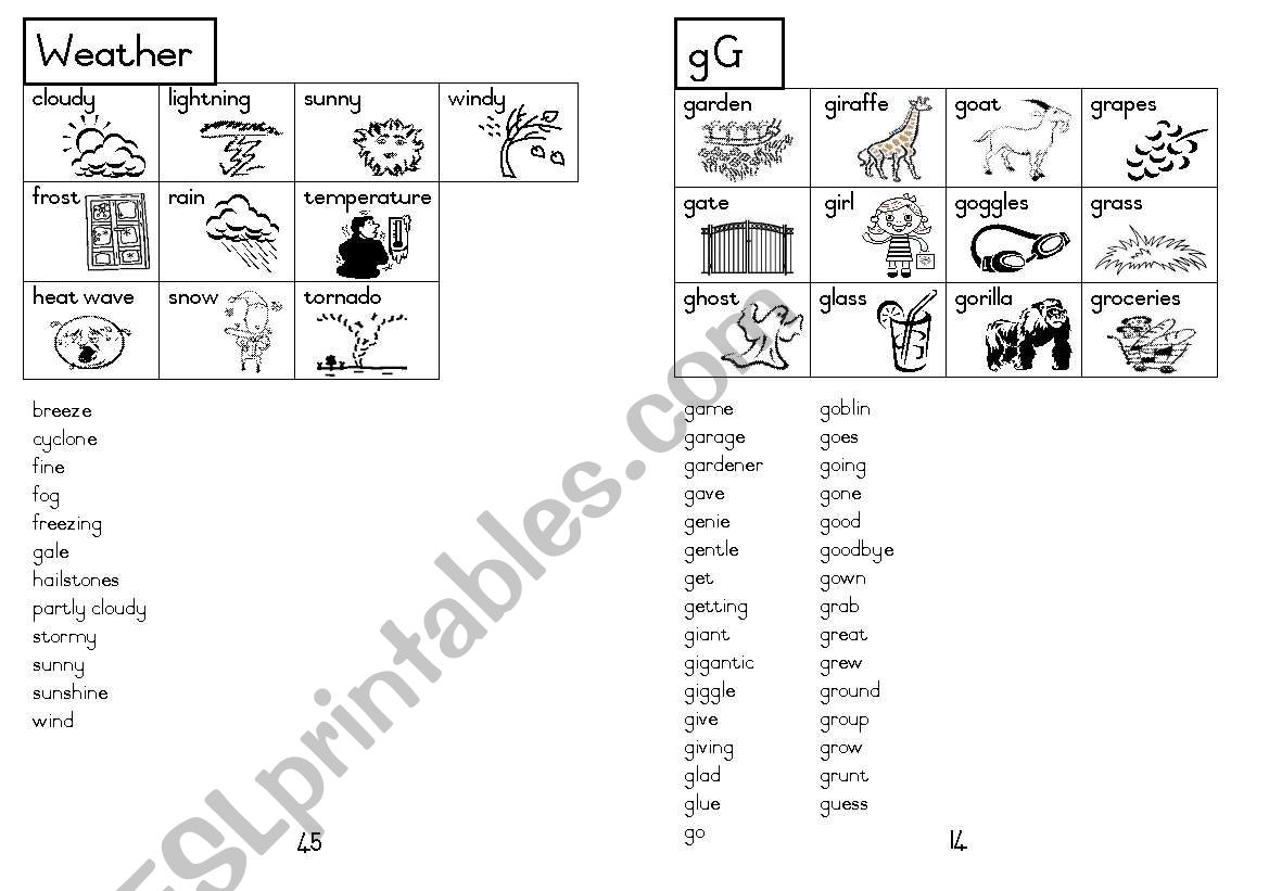 A5 Picture Dictionary 15