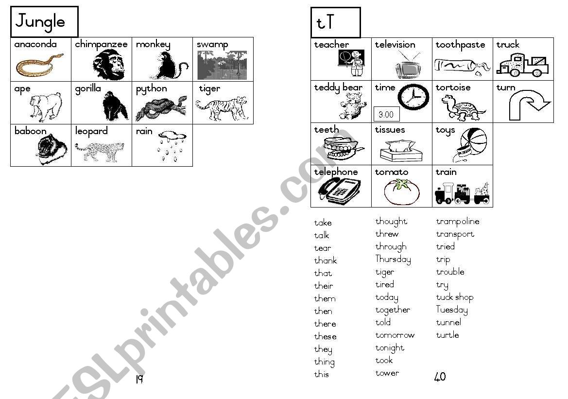 A5 Picture Dictionary 20