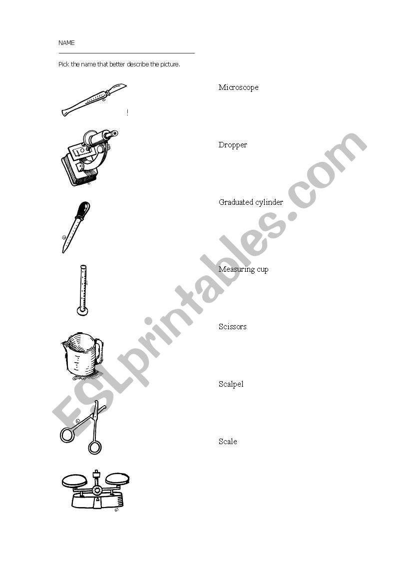 English worksheets: science tools