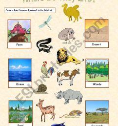 Animal Habitats - 2 exercises - ESL worksheet by Anna P [ 1169 x 821 Pixel ]