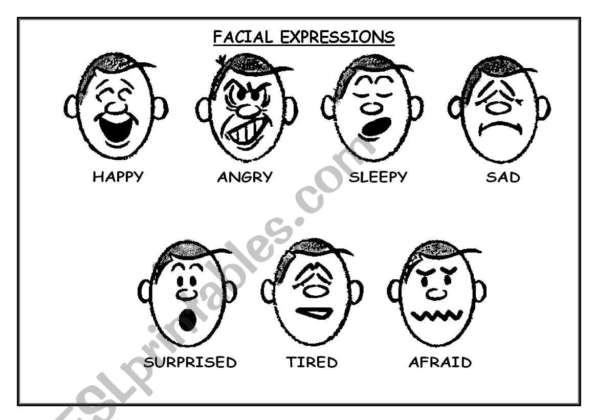 English Worksheets Facial Expressions