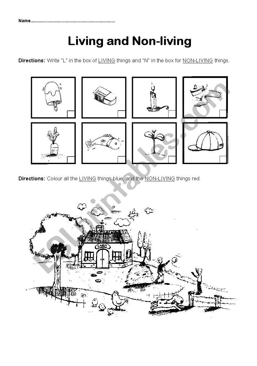 English worksheets: Living and Non-living things