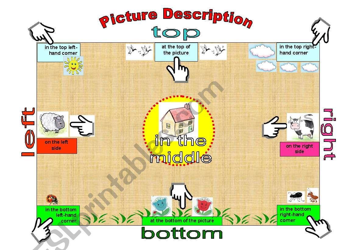 Picture Description Useful Phrases Editable