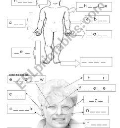 body worksheet - ESL worksheet by rubentapia78 [ 1389 x 838 Pixel ]