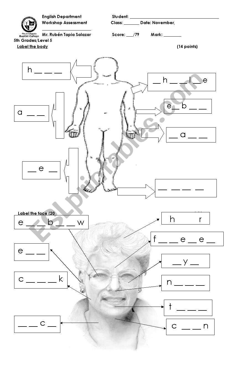 hight resolution of body worksheet - ESL worksheet by rubentapia78