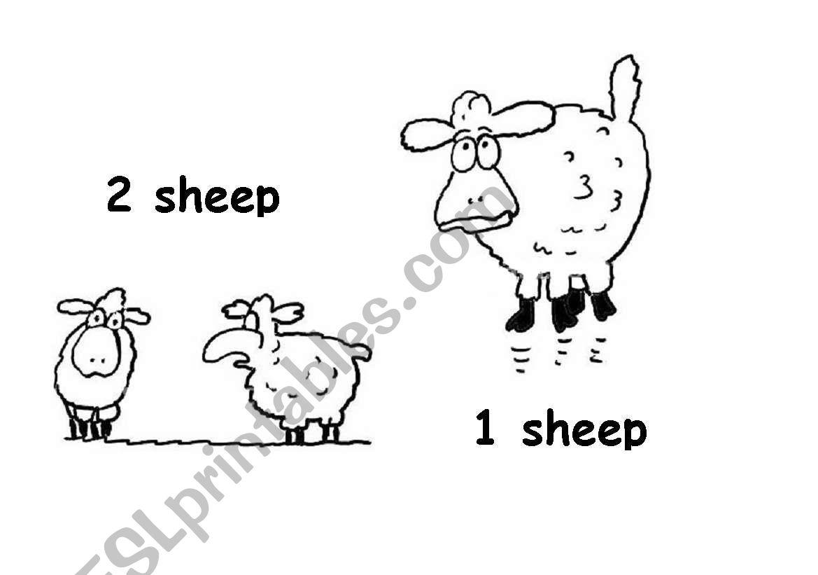 Plural Nouns 9
