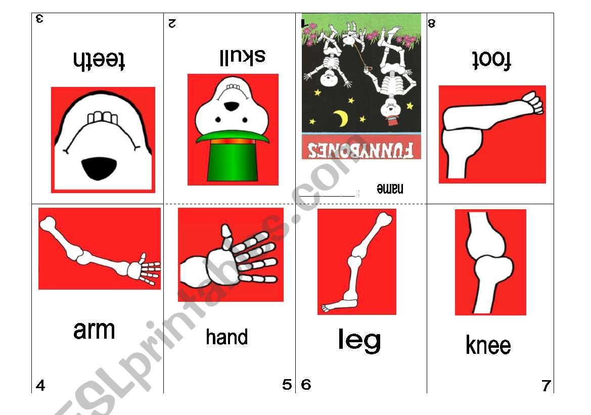 Minibook Funnybones