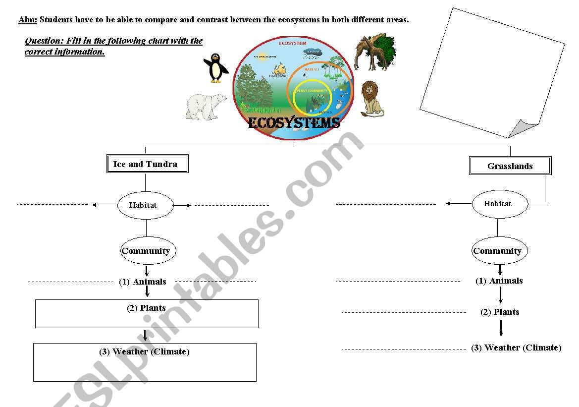English Worksheets Comparing And Contrasting Ecosystems