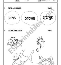 English worksheets: SEA ANIMALS 1ST GRADE TEST [ 1169 x 821 Pixel ]