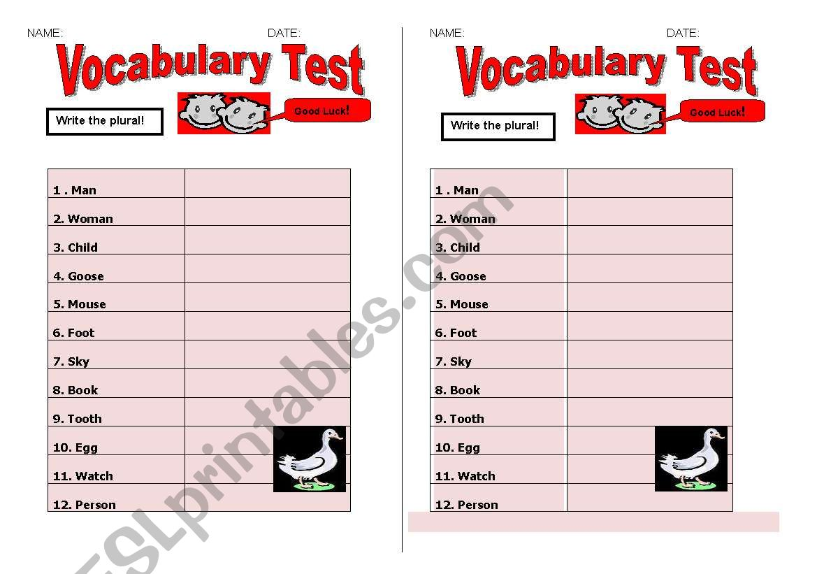 Plural Of Nouns Test