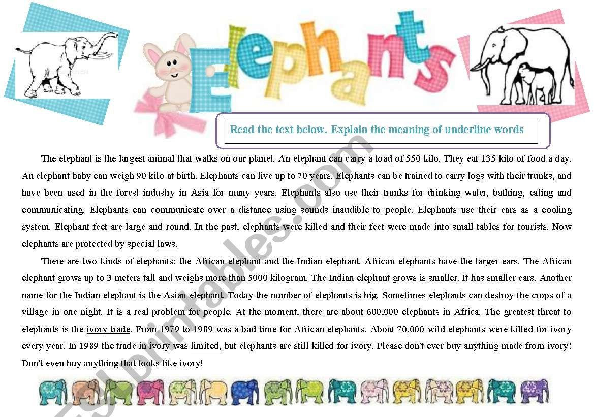 Reading Elephants