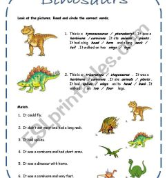Dinosaurs activities including a song (4 pages + answer key) - ESL worksheet  by rakelsg [ 1169 x 821 Pixel ]