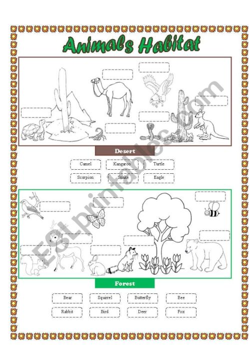 small resolution of Animals Habitat (desert - forest) - Cut and paste part 2 - ESL worksheet by  lupiscasu